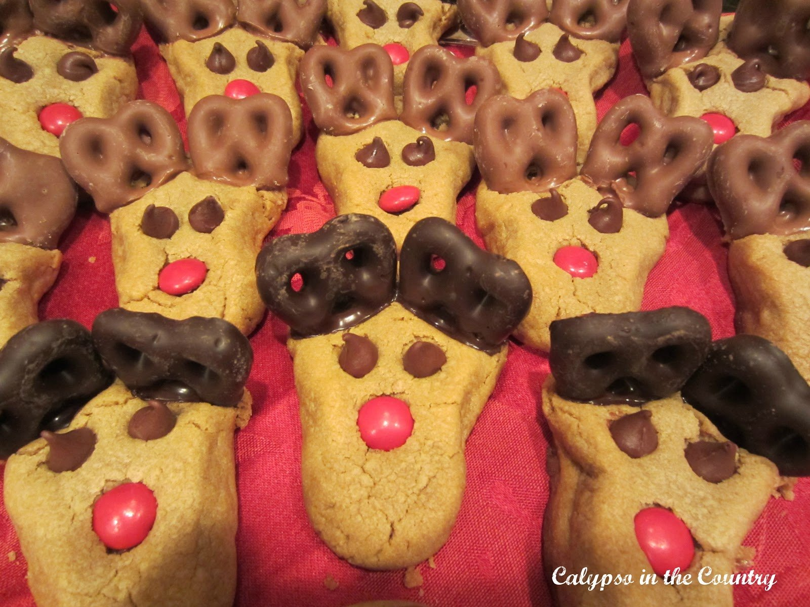 The Reindeer Cookies (Easy Recipe with Tips)