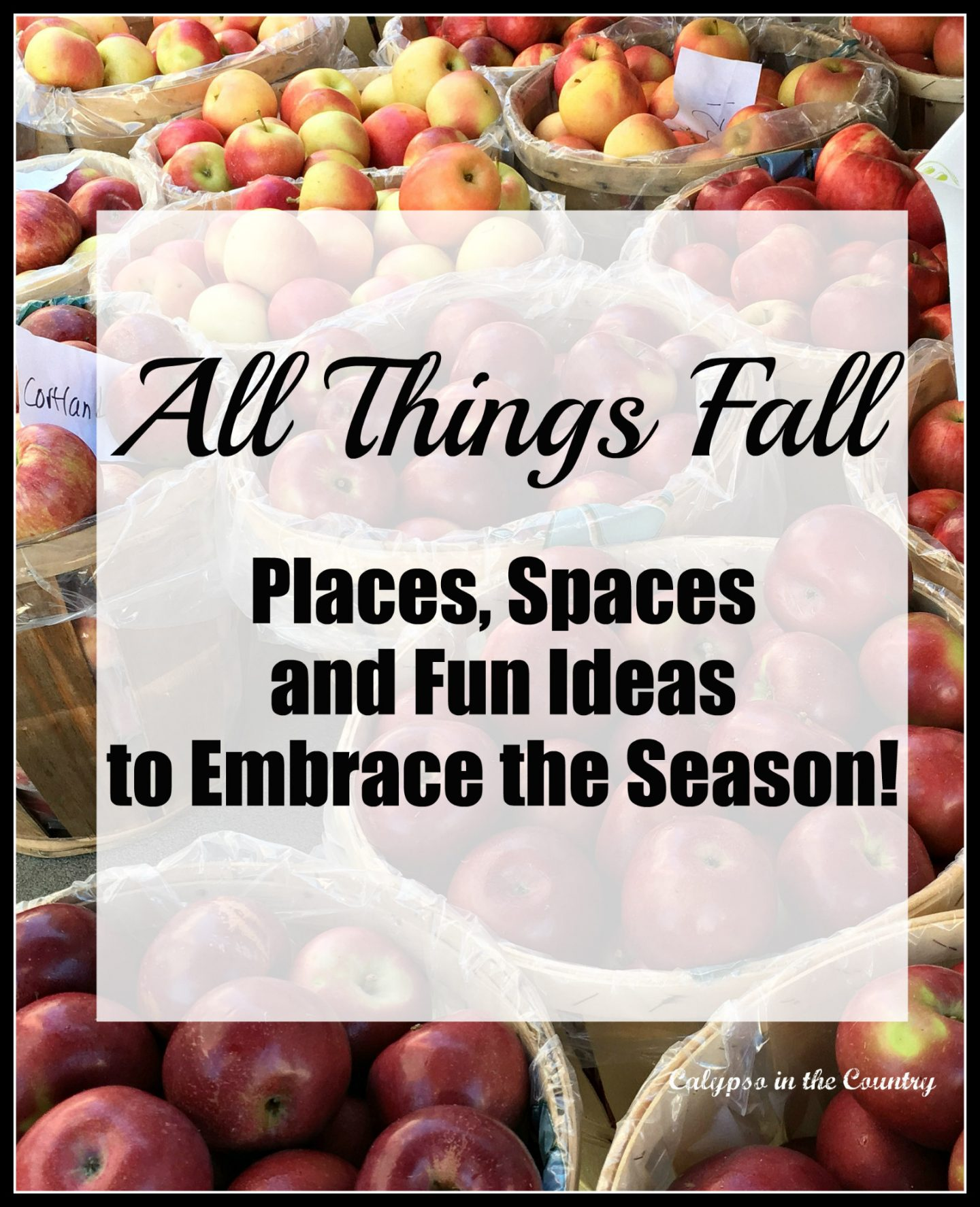 Fall Inspiration including travel, decorating and projects.