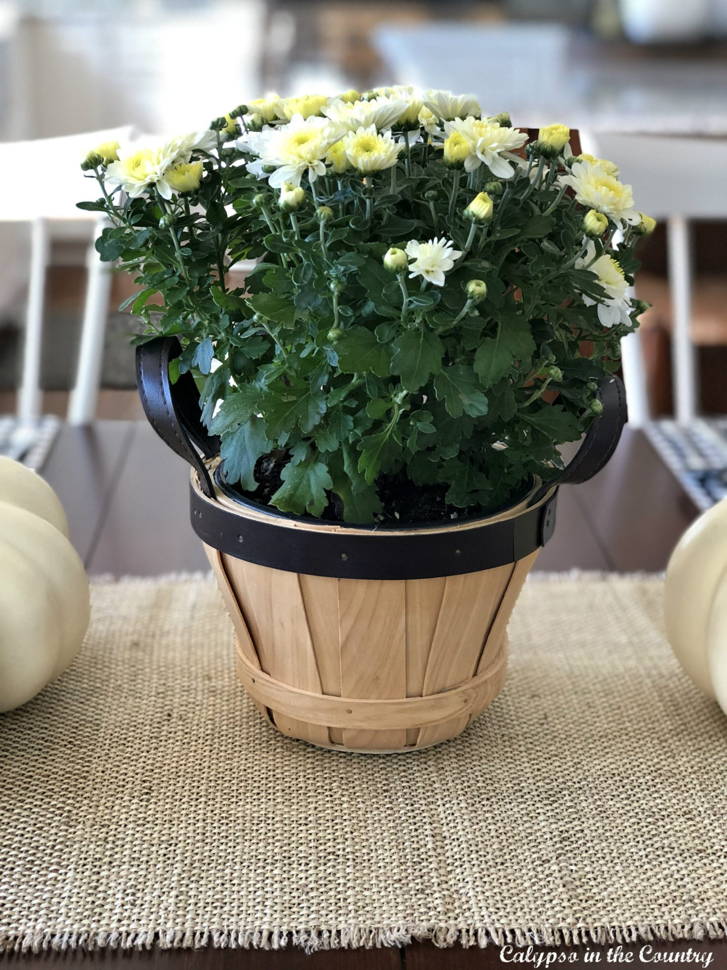 Fall tablesetting with burlap runner and mums