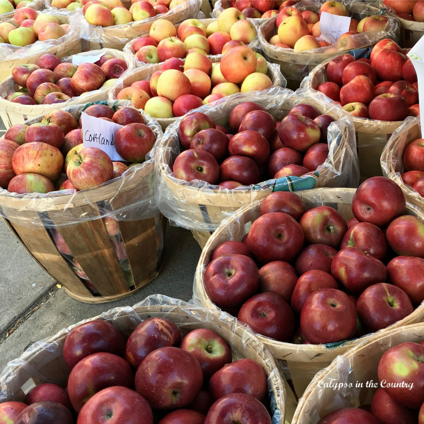 Apples at the farmer's market and other places to spend a fall day