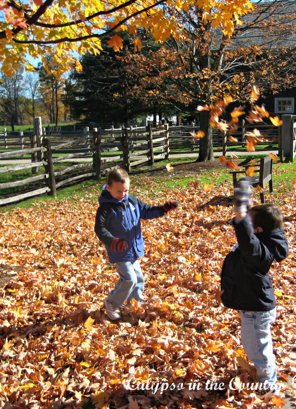 Ways to celebrate fall - jump in the leaves!