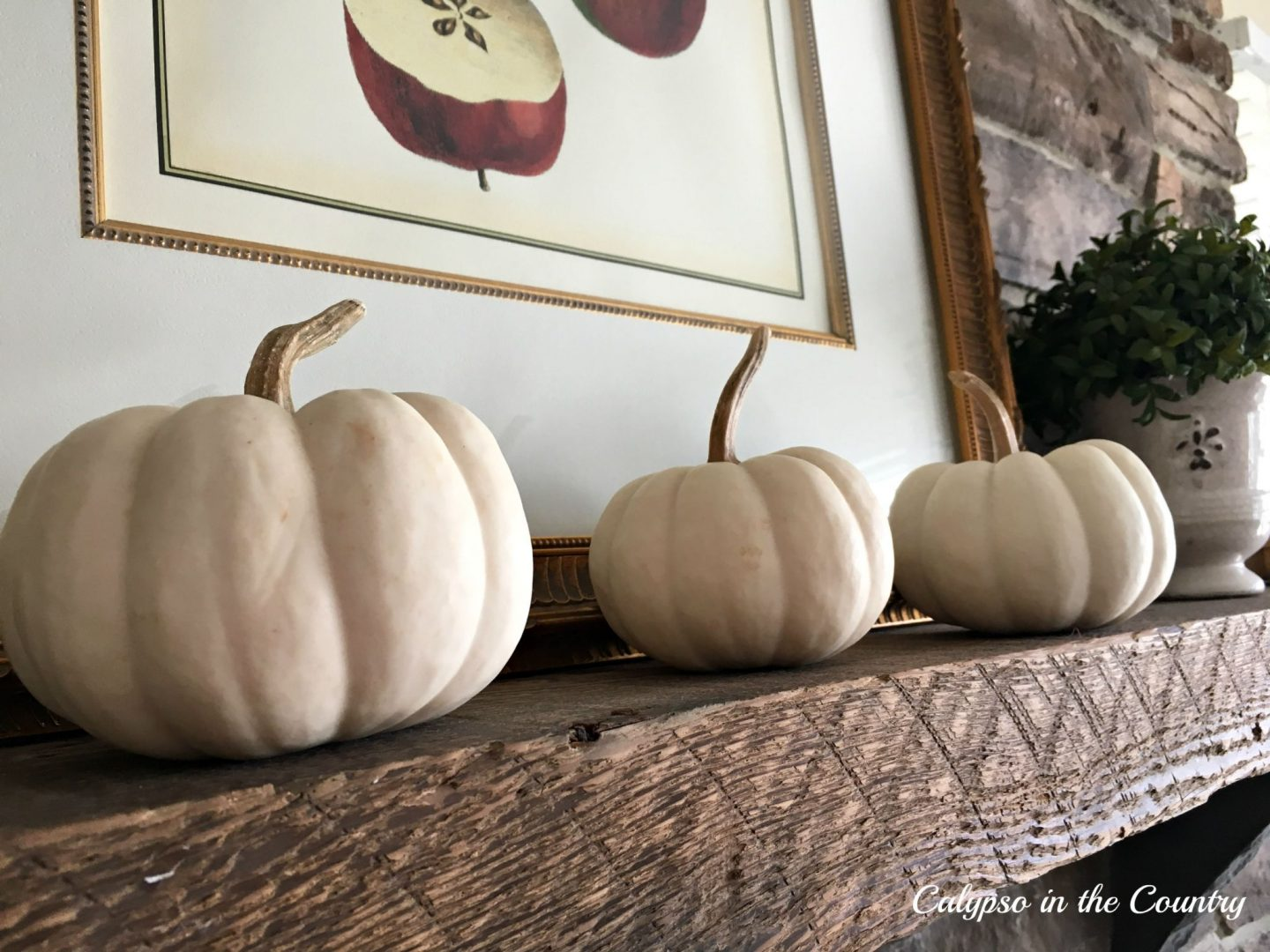 White pumpkins and apples on a rustic mantel for fall