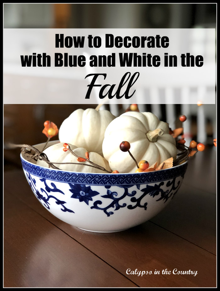 Ideas for fall using blue and white