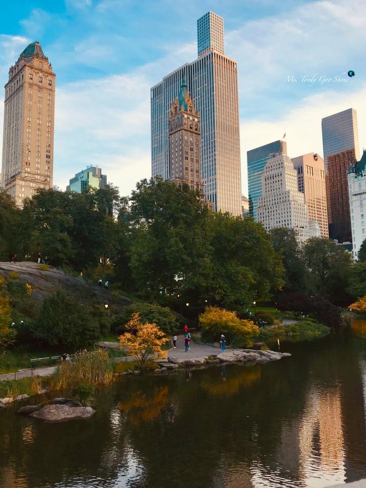 The Pond: Central Park