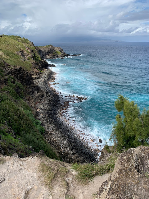 Hawaiian cliffs and water