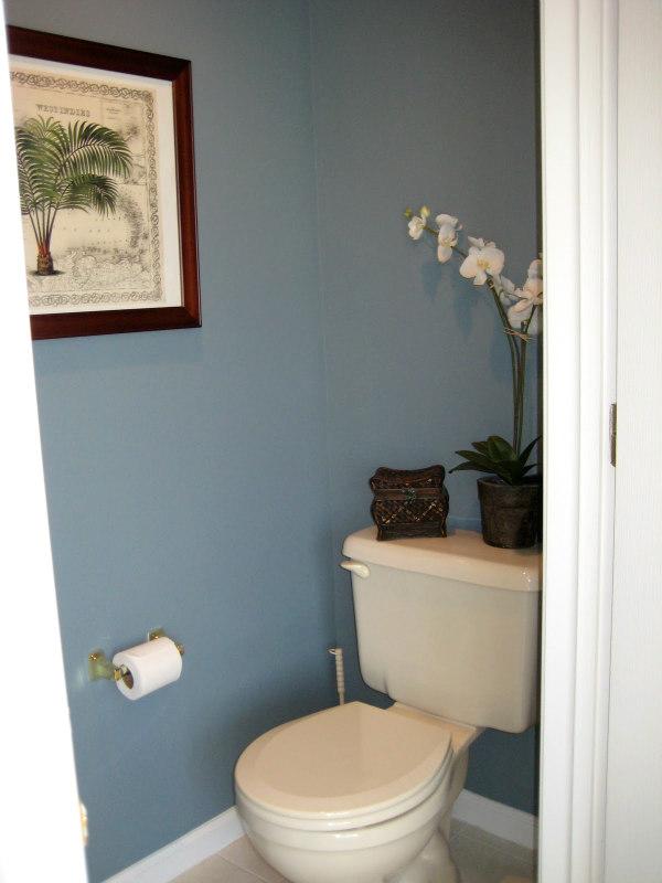Blue water closet
