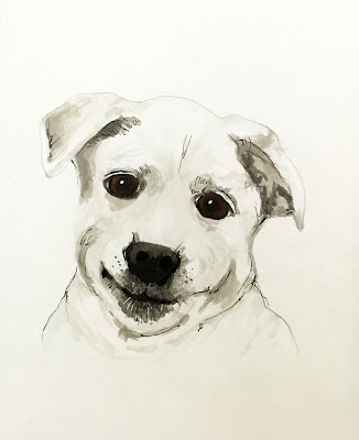 dog artwork