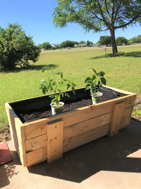 great outdoors pallet planter box