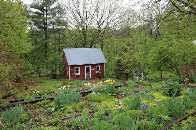 spring garden with red shed