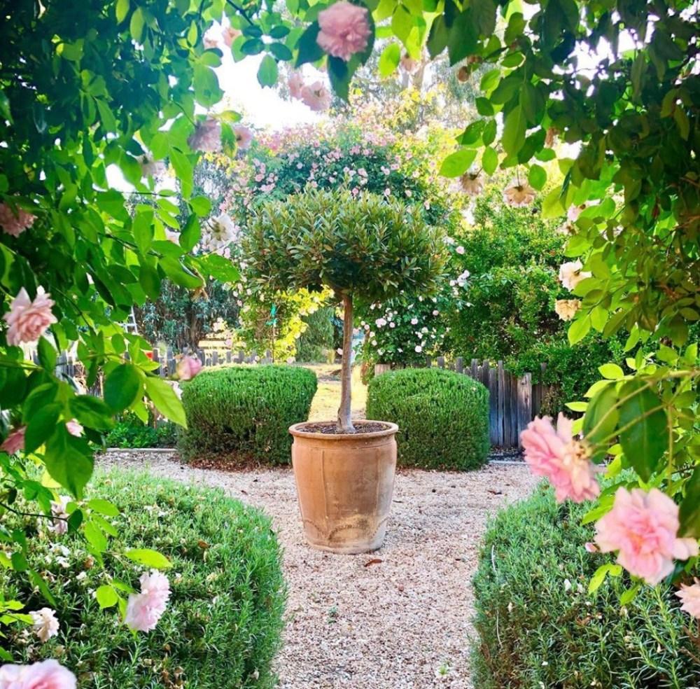 the great outdoors - summer garden