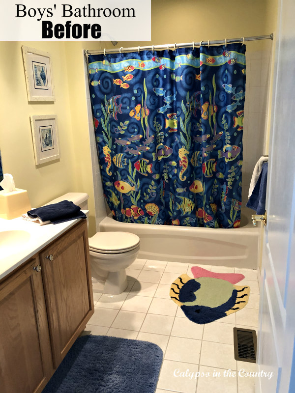 Fish Theme Boys Bathroom - Before Makeover