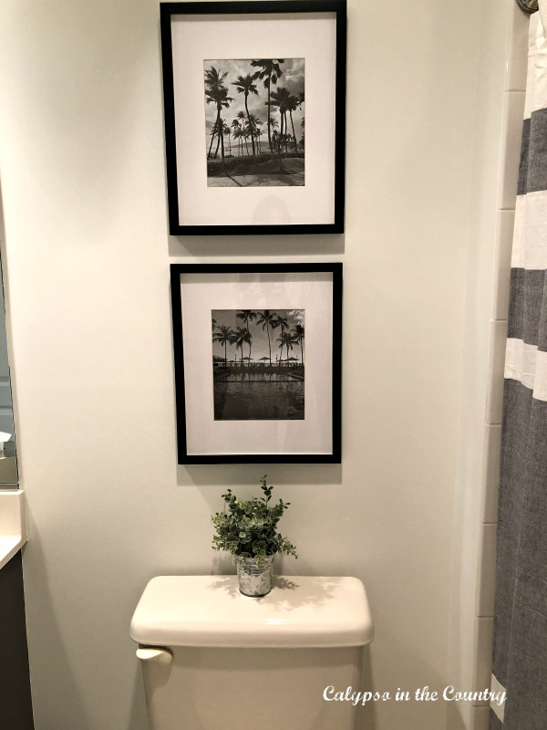Framed black and white photos over toiled