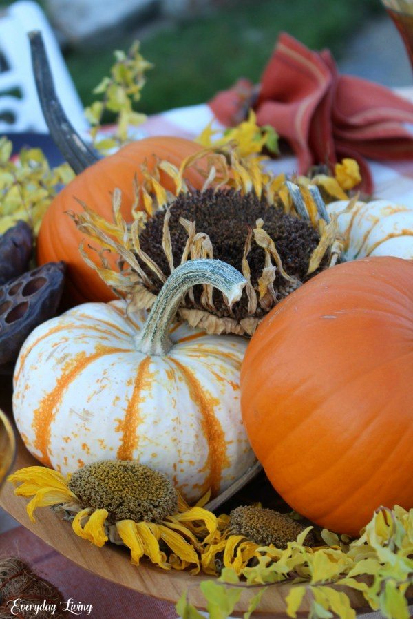 Pumpkins vignettes - Happy October