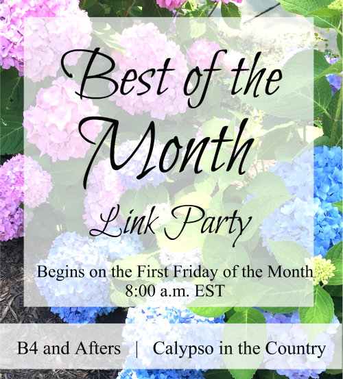 Best of the Month blog party