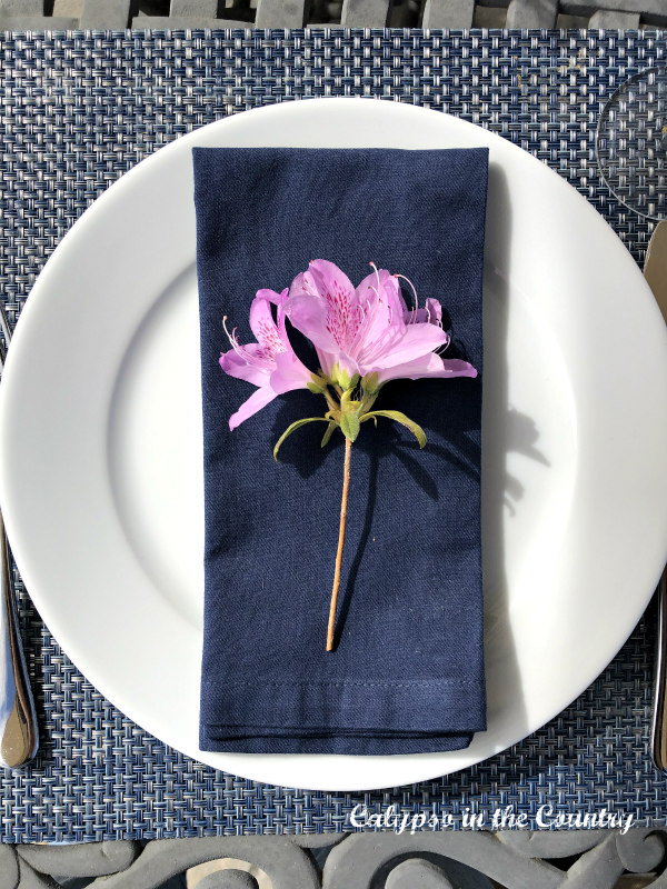 simple spring place setting - white plate with navy napkin and purple flower from garden
