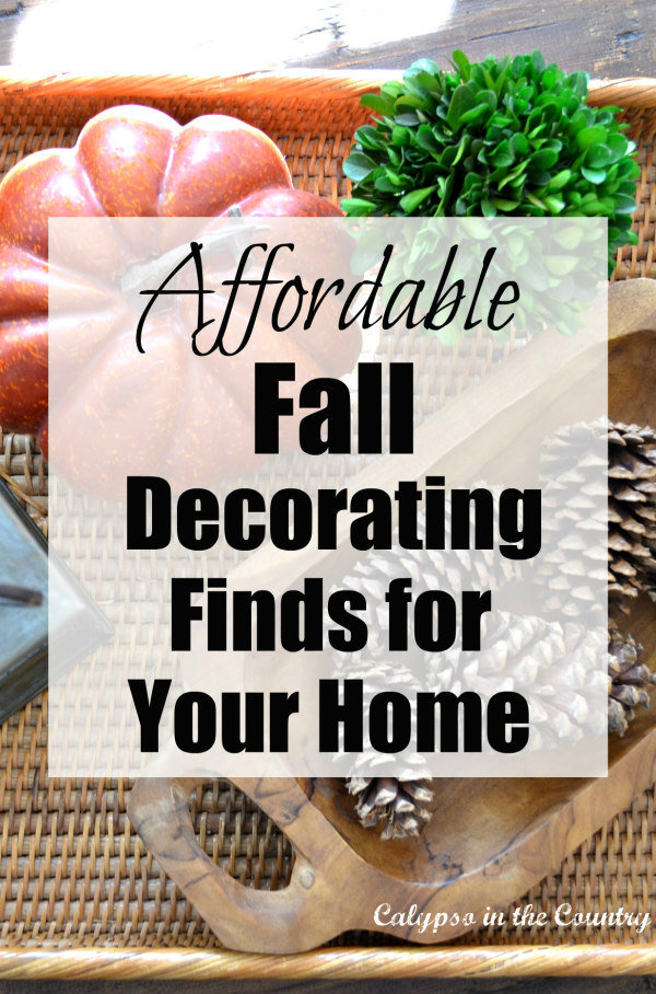 Affordable Fall Decorating Finds for Y
