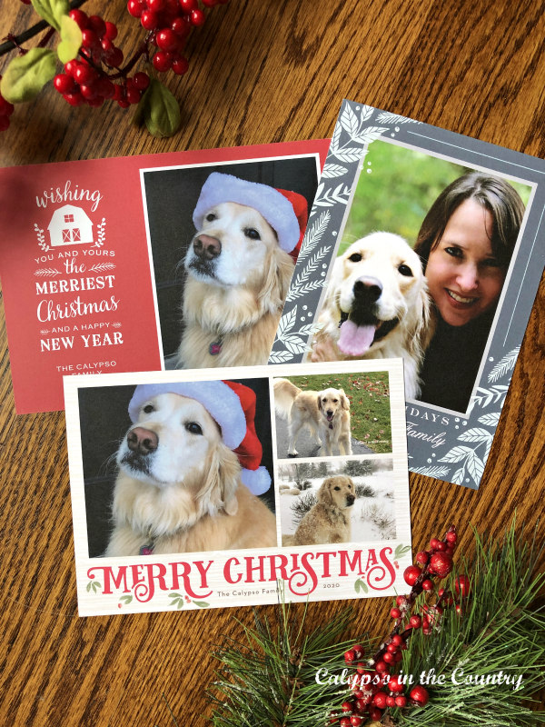 (Sponsored) Basic Invite Personalized Holiday Card Samples
