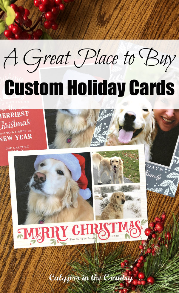 (Sponsored by Basic Invite) Great Place to Buy Custom Holiday Cards