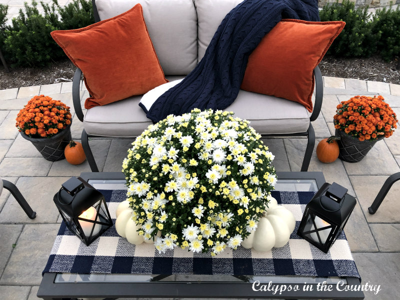 Back patio seating area with orange and blue