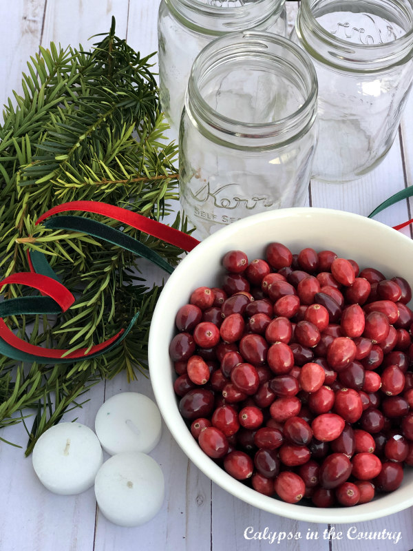 What to Do with Leftover Cranberries (Simple Decor and More)
