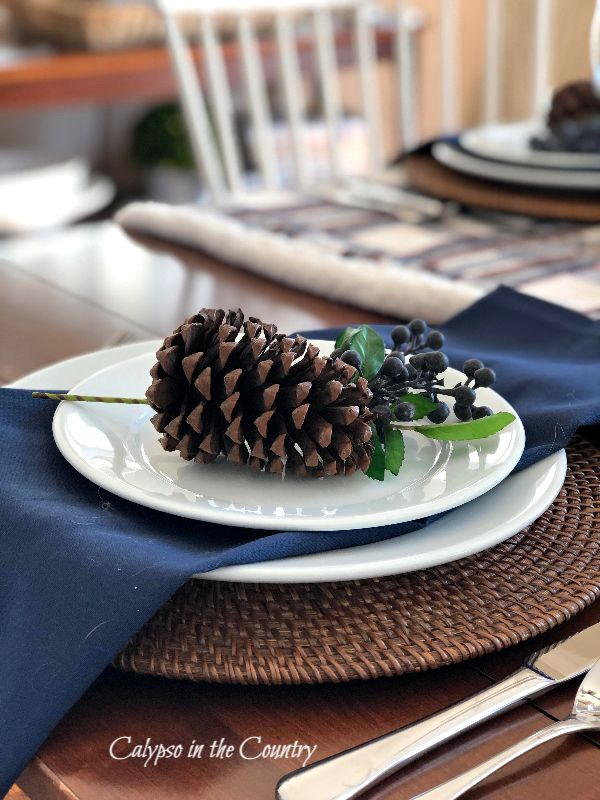 Pine cones on white plates