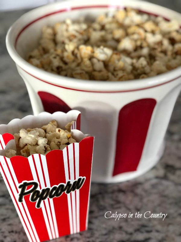 Red and White Popcorn bowl and holder with popcorn