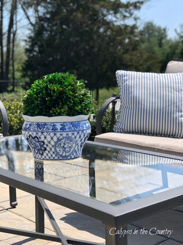 blue and white porcelain with boxwood on outdoor table