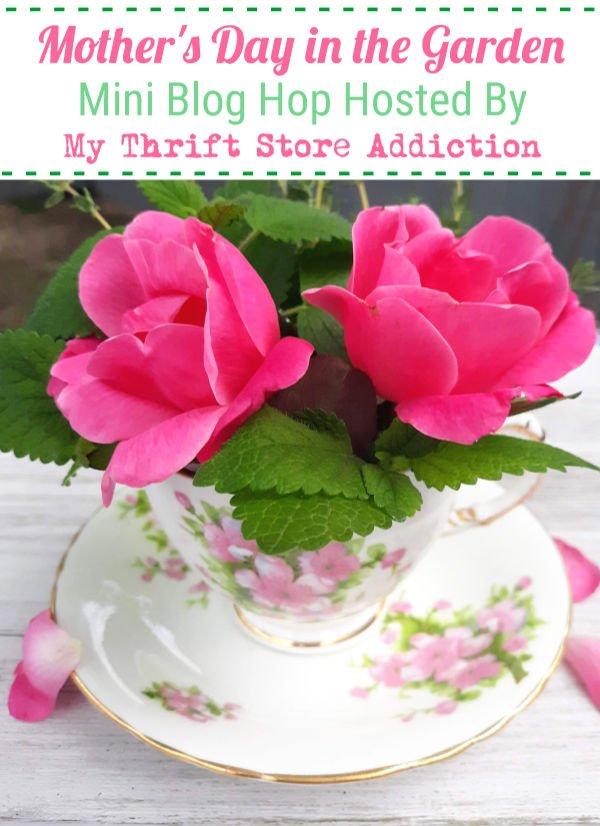 Pink roses i tea cup