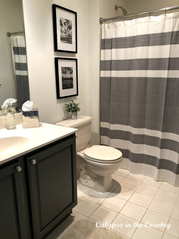 boys bathroom with gray and white stripes shower curtain