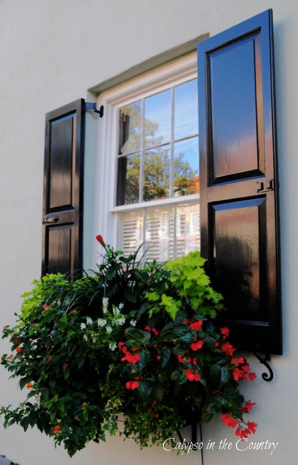 Window box with black shutters