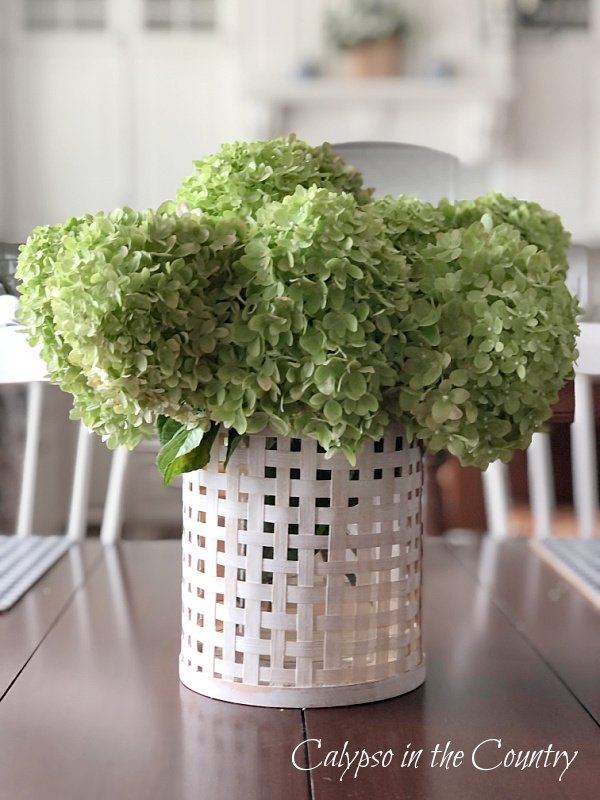 Green hydrangeas in white woven container - early fall decor for the kitchen